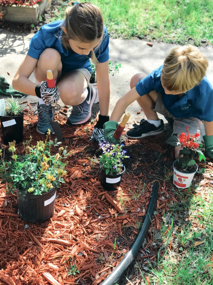 Our Montessori School curriculum fosters a student's curiosity and natural  interest in learning. The Lower Division programs are designed to establish  ...